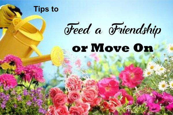 Tips to Feed a Friendship or Move On