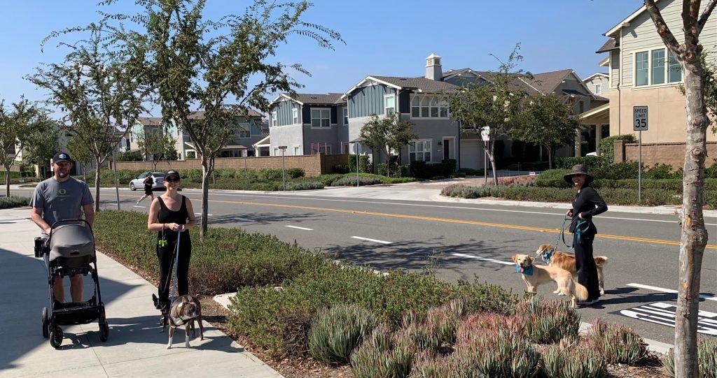 Kay Hunter demonstrating dog etiquette during walk